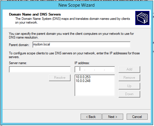Config DHCP: Scelta dei DNS